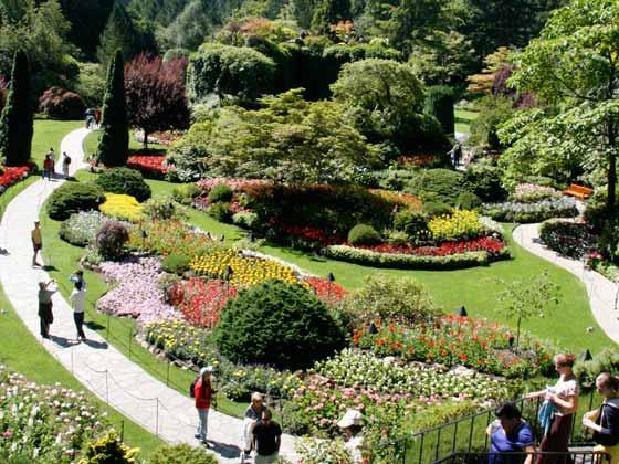 加拿大-维多利亚-布查特花园