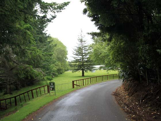 新西兰-罗托鲁阿