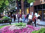美国-芝加哥-购物
