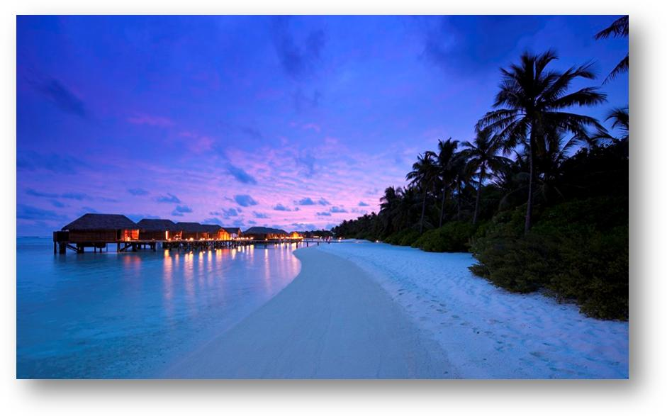 在泻湖之上的马尔代夫港丽度假村,在世界第一个全玻璃海底餐厅就餐,在